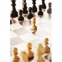 Chess - Youth (ages 6 to 12) - Laval