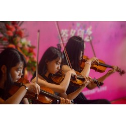 Individual violin lessons - youth - LAVAL