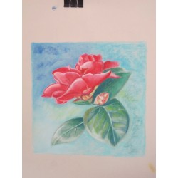 Pastel Drawing - Adults - Longueuil