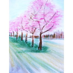 Pastel classes - Adults - Longueuil